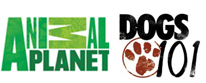Animal Planet Dogs 101